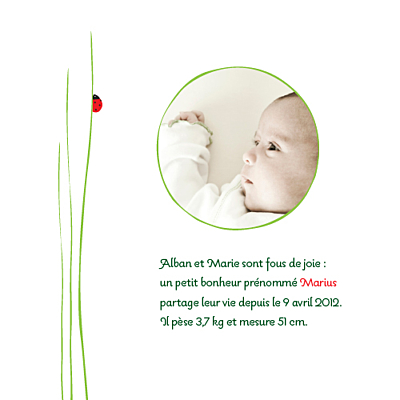 Faire-part de naissance Coccinelle photo rouge finition